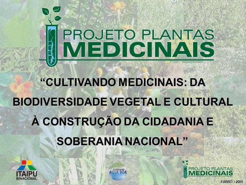 FABRO / 2005 CULTIVANDO MEDICINAIS: DA BIODIVERSIDADE VEGETAL E CULTURAL À CONSTRUÇÃO DA CIDADANIA E SOBERANIA NACIONAL