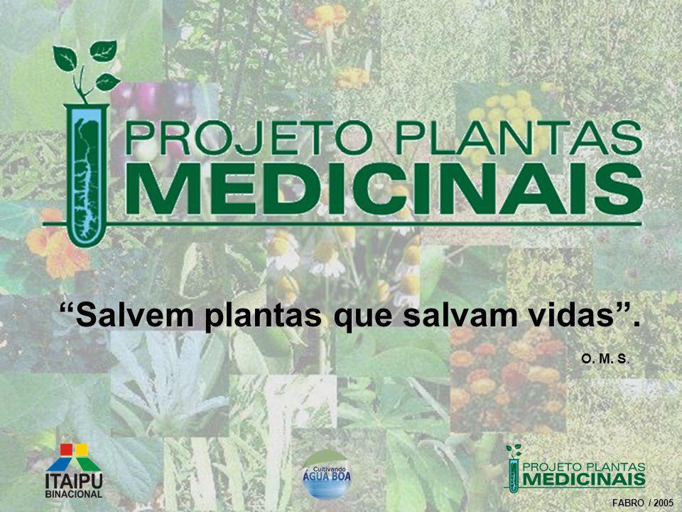 FABRO / 2005 Salvem plantas que salvam vidas. O. M. S O. M. S.