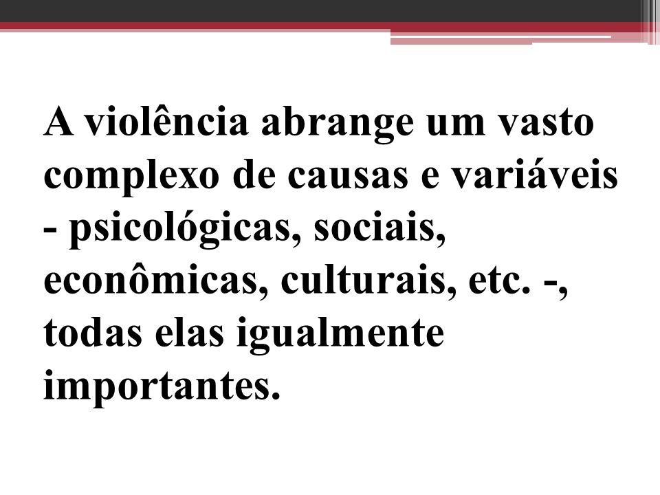 A violência abrange um vasto complexo de causas e variáveis - psicológicas, sociais, econômicas, culturais, etc. -, todas elas igualmente importantes.
