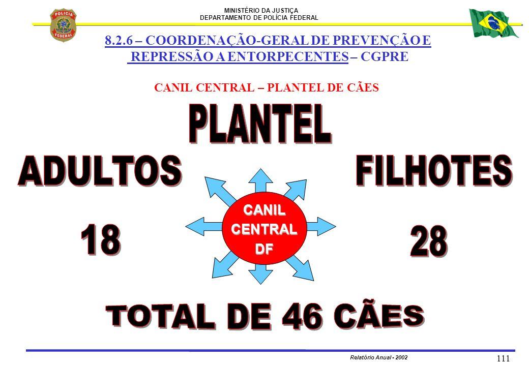 MINISTÉRIO DA JUSTIÇA DEPARTAMENTO DE POLÍCIA FEDERAL Relatório Anual - 2002 111 CANILCENTRALDF CANIL CENTRAL – PLANTEL DE CÃES 8.2.6 – COORDENAÇÃO-GE