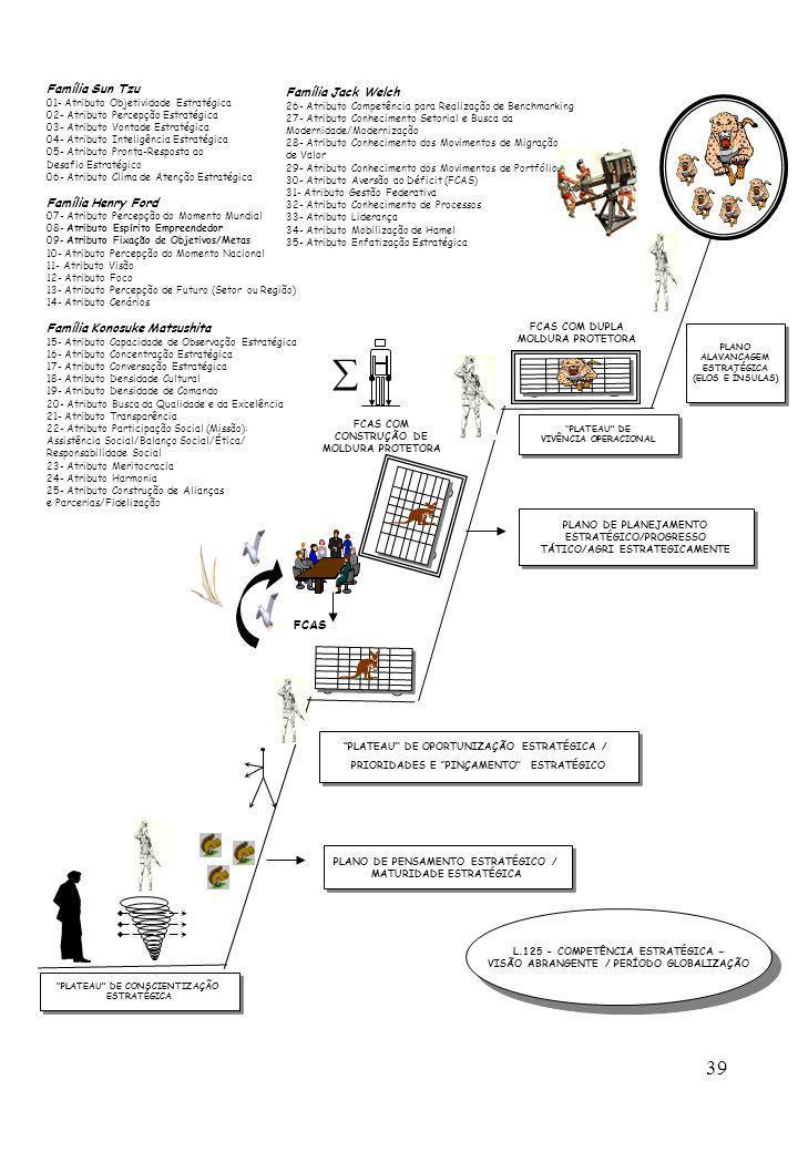 39 PLATEAU DE CONSCIENTIZAÇÃO ESTRATÉGICA PLATEAU DE VIVÊNCIA OPERACIONAL PLATEAU DE VIVÊNCIA OPERACIONAL FCAS COM DUPLA MOLDURA PROTETORA FCAS FCAS C