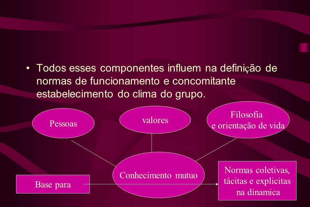 Todos esses componentes influem na defini ç ão de normas de funcionamento e concomitante estabelecimento do clima do grupo. Pessoas valores Filosofia