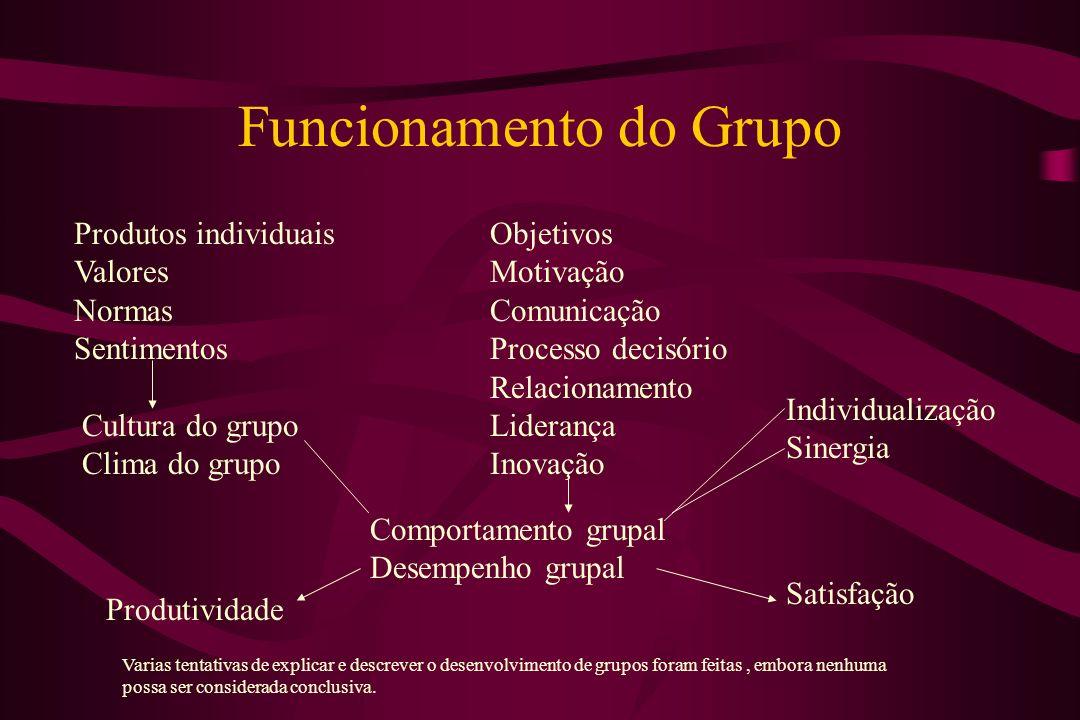 Funcionamento do Grupo Comportamento grupal Desempenho grupal Produtos individuais Valores Normas Sentimentos Cultura do grupo Clima do grupo Objetivo