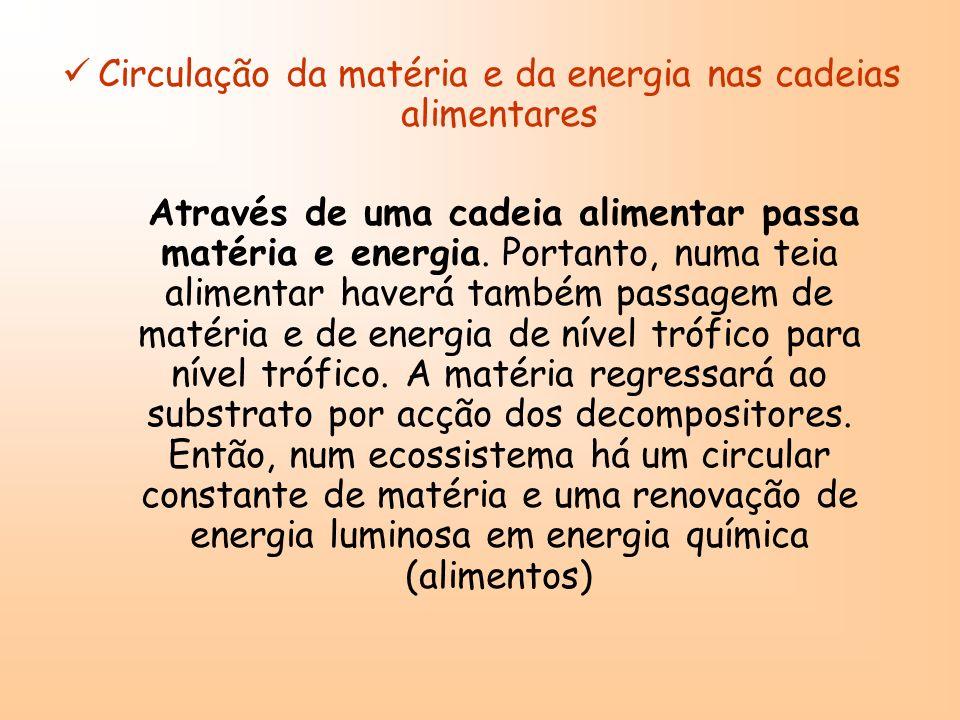 Circulação da matéria e da energia nas cadeias alimentares Através de uma cadeia alimentar passa matéria e energia. Portanto, numa teia alimentar have
