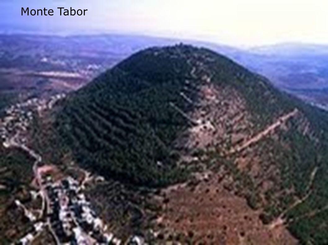 Monte Carmelo - Significa jardim ou campo fértil .