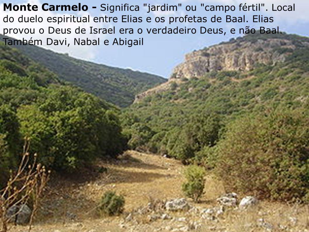 Montes Ebal (pedra) e Gerizim - Ficam na Samaria.Montes das maldições e bênçãos.