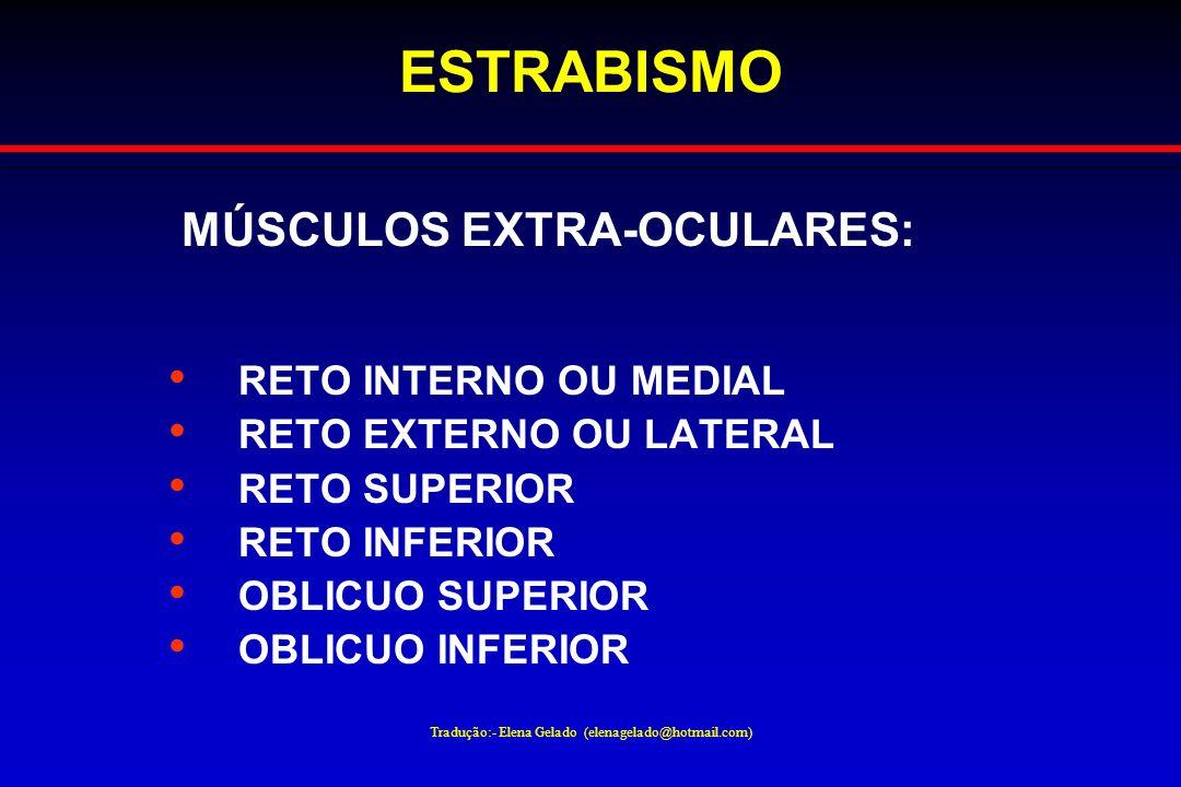 Tradução:- Elena Gelado (elenagelado@hotmail.com) ESTRABISMO MÚSCULOS EXTRA-OCULARES: RETO INTERNO OU MEDIAL RETO EXTERNO OU LATERAL RETO SUPERIOR RET