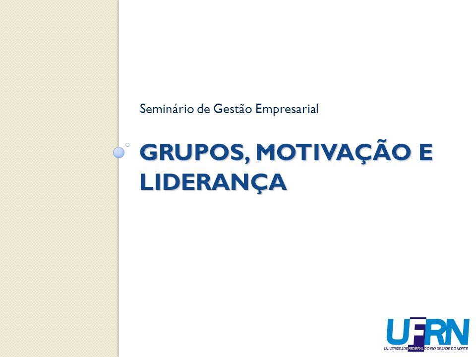 GRUPOS, MOTIVAÇÃO E LIDERANÇA Seminário de Gestão Empresarial