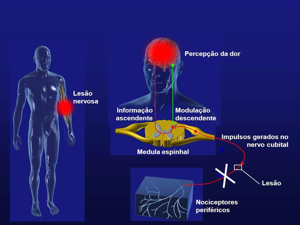 Nociceptores periféricos Informação ascendente Modulação descendente Lesão nervosa Percepção da dor Impulsos gerados no nervo cubital Medula espinhal