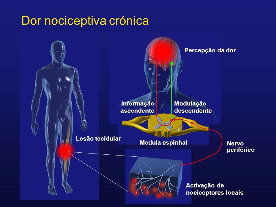 Activação de nociceptores locais Nervo periférico Medula espinhal Lesão tecidular Informação ascendente Dor nociceptiva crónica Percepção da dor Modul