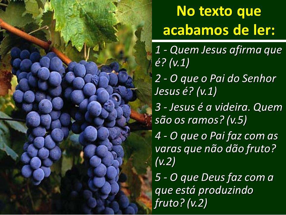 No texto que acabamos de ler: 1 - Quem Jesus afirma que é? (v.1) 2 - O que o Pai do Senhor Jesus é? (v.1) 3 - Jesus é a videira. Quem são os ramos? (v