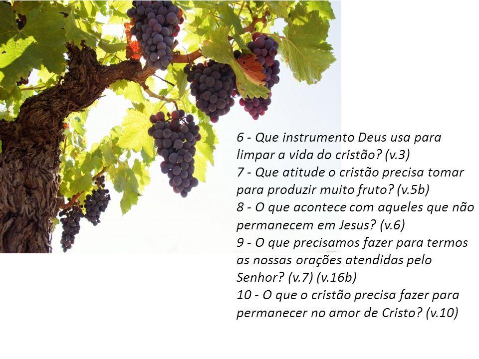 6 - Que instrumento Deus usa para limpar a vida do cristão? (v.3) 7 - Que atitude o cristão precisa tomar para produzir muito fruto? (v.5b) 8 - O que