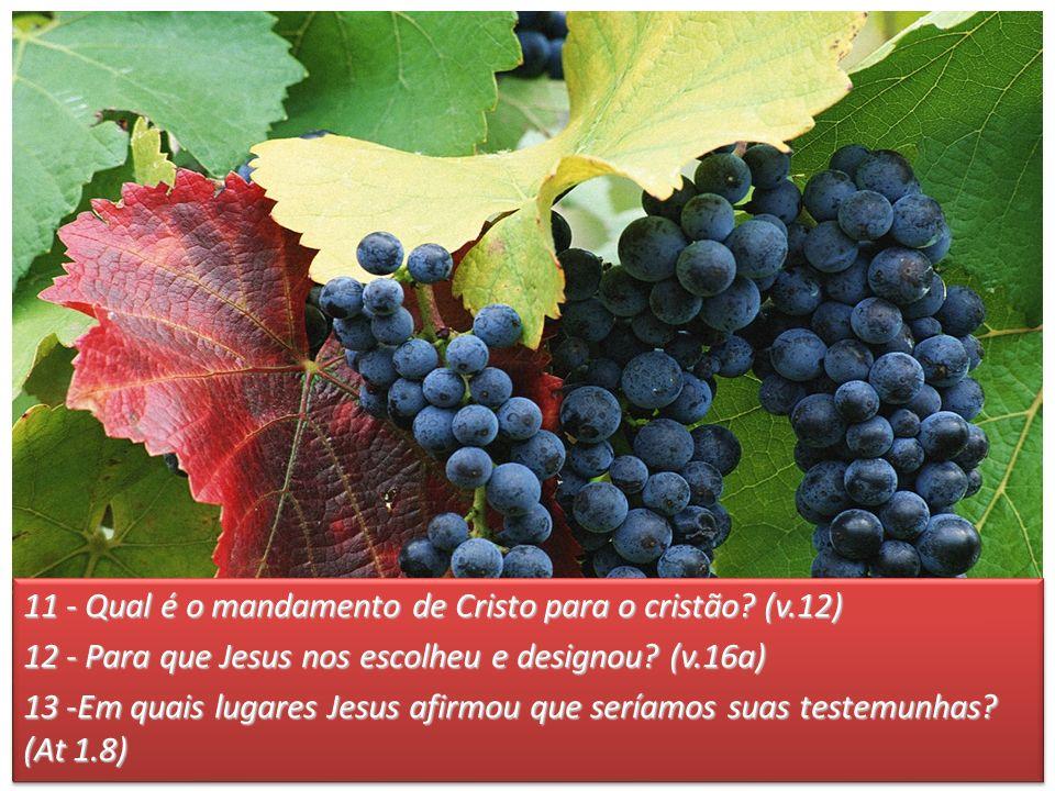 11 - Qual é o mandamento de Cristo para o cristão? (v.12) 12 - Para que Jesus nos escolheu e designou? (v.16a) 13 -Em quais lugares Jesus afirmou que