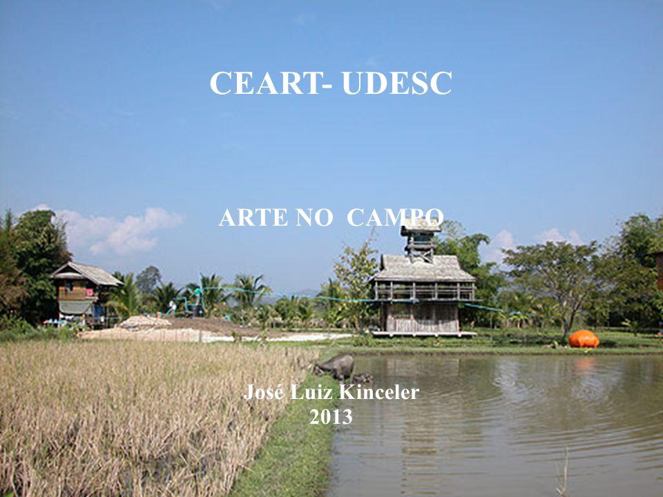 CEART- UDESC ARTE NO CAMPO José Luiz Kinceler 2013