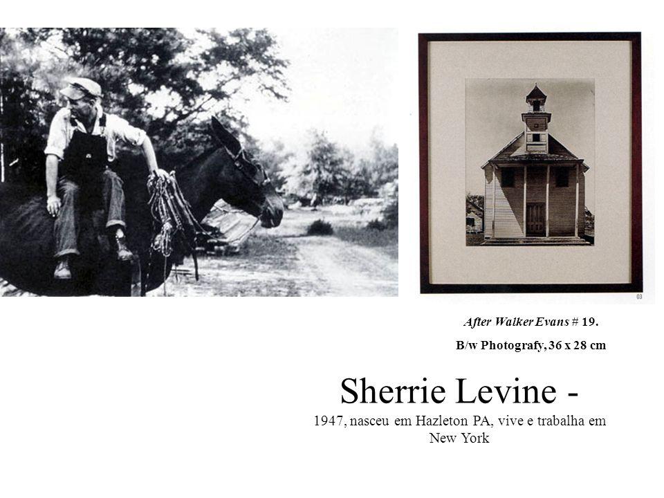 Sherrie Levine - 1947, nasceu em Hazleton PA, vive e trabalha em New York After Walker Evans # 19. B/w Photografy, 36 x 28 cm