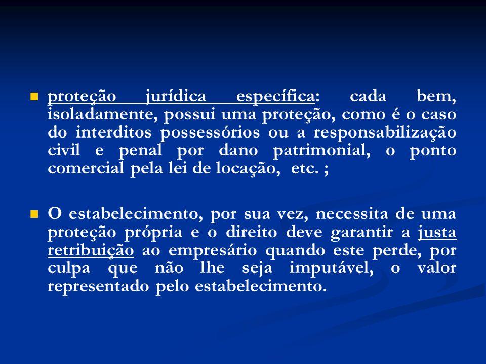 proteção jurídica específica: cada bem, isoladamente, possui uma proteção, como é o caso do interditos possessórios ou a responsabilização civil e pen