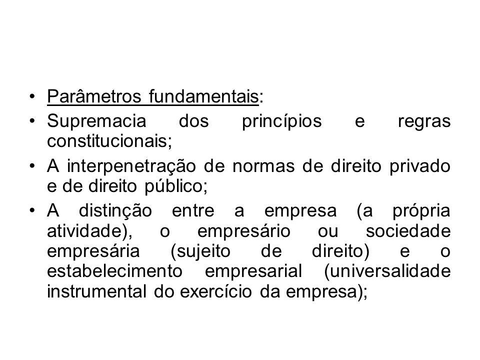 Parâmetros fundamentais: Supremacia dos princípios e regras constitucionais; A interpenetração de normas de direito privado e de direito público; A di