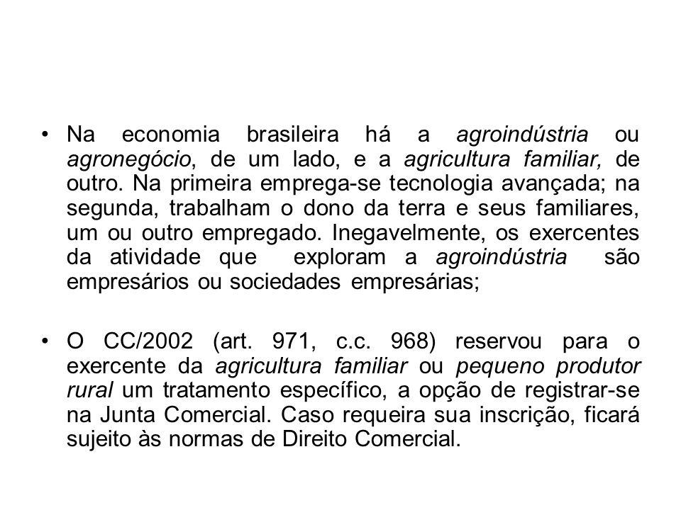 Na economia brasileira há a agroindústria ou agronegócio, de um lado, e a agricultura familiar, de outro. Na primeira emprega-se tecnologia avançada;