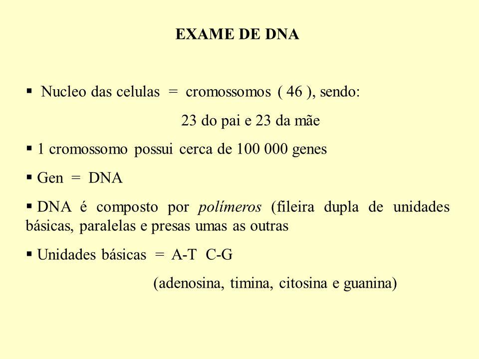 EXAME DE DNA Nucleo das celulas = cromossomos ( 46 ), sendo: 23 do pai e 23 da mãe 1 cromossomo possui cerca de 100 000 genes Gen = DNA DNA é composto por polímeros (fileira dupla de unidades básicas, paralelas e presas umas as outras Unidades básicas = A-T C-G (adenosina, timina, citosina e guanina)