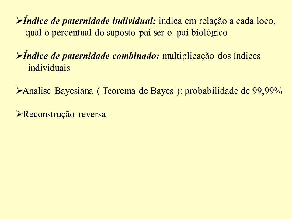 Índice de paternidade individual: indica em relação a cada loco, qual o percentual do suposto pai ser o pai biológico Índice de paternidade combinado: multiplicação dos índices individuais Analise Bayesiana ( Teorema de Bayes ): probabilidade de 99,99% Reconstrução reversa