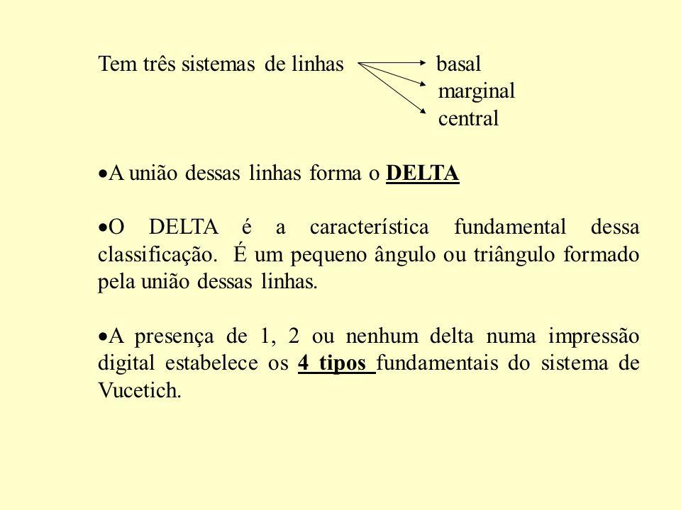 Tem três sistemas de linhas basal marginal central A união dessas linhas forma o DELTA O DELTA é a característica fundamental dessa classificação.
