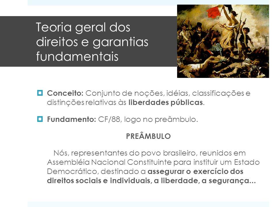 Teoria geral dos direitos e garantias fundamentais Conceito: Conjunto de noções, idéias, classificações e distinções relativas às liberdades públicas.