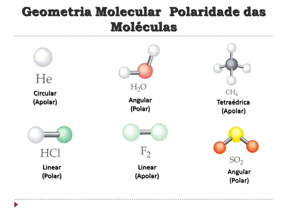 - Soluto: é um sólido que se encontra em menor quantidade na solução; - Solvente: é o liquido que consegue solubilizar (dissolver) o soluto.