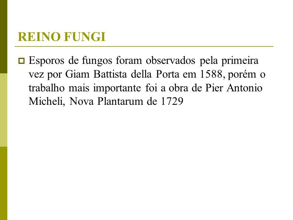 Esporos de fungos foram observados pela primeira vez por Giam Battista della Porta em 1588, porém o trabalho mais importante foi a obra de Pier Antoni