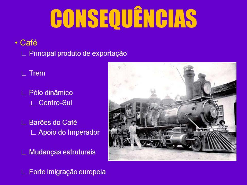 CONSEQUÊNCIAS Café Principal produto de exportação Trem Pólo dinâmico Centro-Sul Barões do Café Apoio do Imperador Mudanças estruturais Forte imigraçã