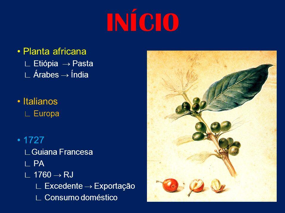 INÍCIO Planta africana Etiópia Pasta Árabes Índia Italianos Europa 1727 Guiana Francesa PA 1760 RJ Excedente Exportação Consumo doméstico