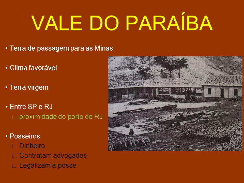 VALE DO PARAÍBA Terra de passagem para as Minas Clima favorável Terra virgem Entre SP e RJ proximidade do porto de RJ Posseiros Dinheiro Contratam adv