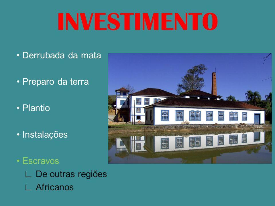 INVESTIMENTO Derrubada da mata Preparo da terra Plantio Instalações Escravos De outras regiões Africanos