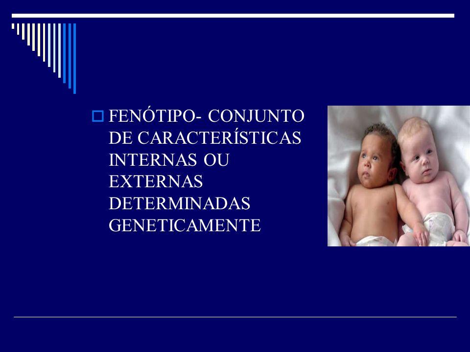 FENÓTIPO- CONJUNTO DE CARACTERÍSTICAS INTERNAS OU EXTERNAS DETERMINADAS GENETICAMENTE