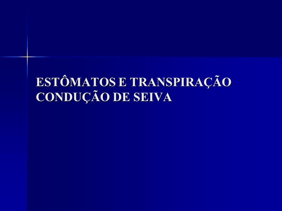 ESTÔMATOS E TRANSPIRAÇÃO CONDUÇÃO DE SEIVA