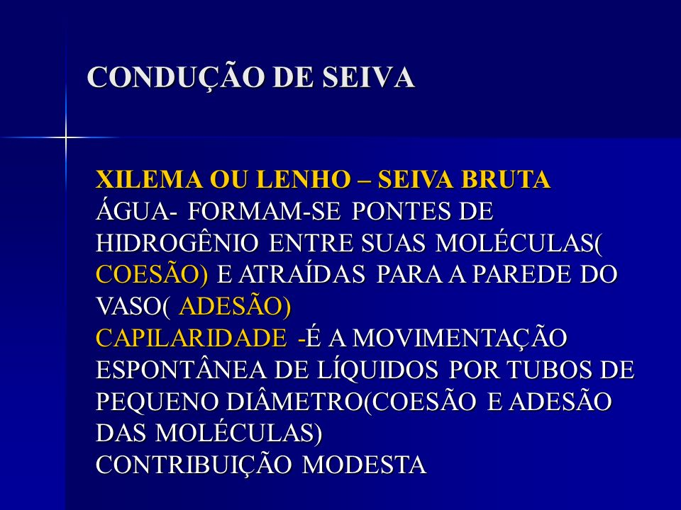 CONDUÇÃO DE SEIVA XILEMA OU LENHO – SEIVA BRUTA ÁGUA- FORMAM-SE PONTES DE HIDROGÊNIO ENTRE SUAS MOLÉCULAS( COESÃO) E ATRAÍDAS PARA A PAREDE DO VASO( A