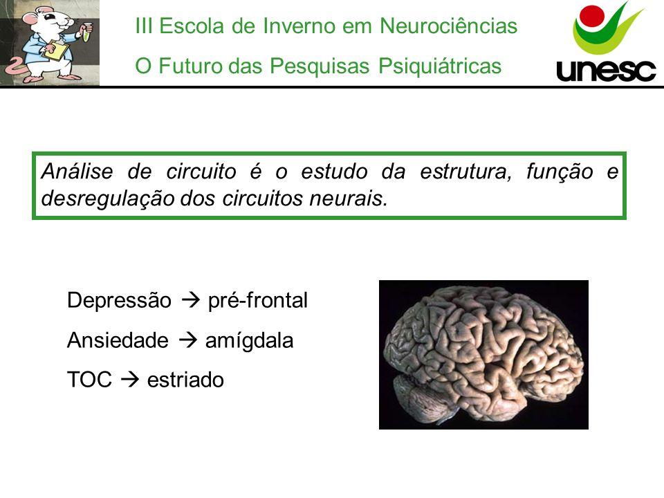 III Escola de Inverno em Neurociências O Futuro das Pesquisas Psiquiátricas Análise de circuito é o estudo da estrutura, função e desregulação dos cir