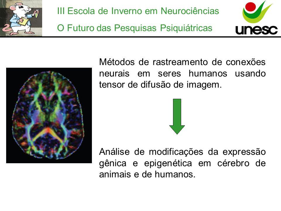 III Escola de Inverno em Neurociências O Futuro das Pesquisas Psiquiátricas Métodos de rastreamento de conexões neurais em seres humanos usando tensor