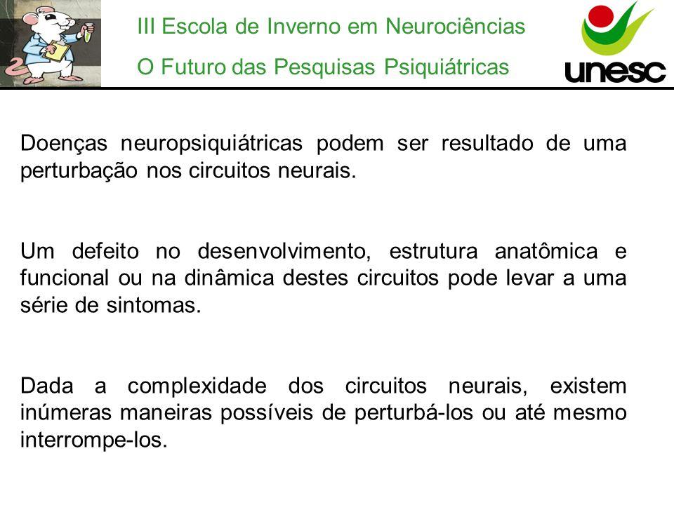 III Escola de Inverno em Neurociências O Futuro das Pesquisas Psiquiátricas Doenças neuropsiquiátricas podem ser resultado de uma perturbação nos circ
