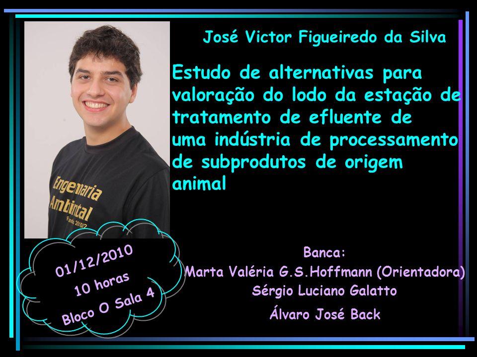 José Victor Figueiredo da Silva Banca: Marta Valéria G.S.Hoffmann (Orientadora) Sérgio Luciano Galatto Álvaro José Back 01/12/2010 10 horas Bloco O Sa