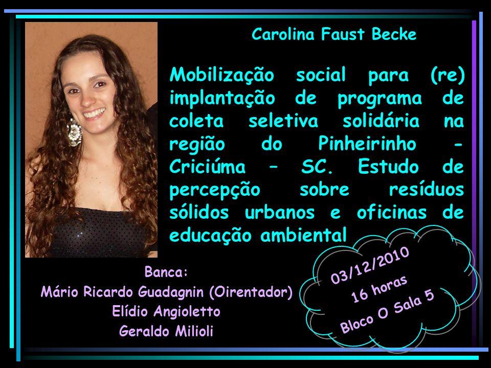 Carolina Faust Becke Banca: Mário Ricardo Guadagnin (Oirentador) Elídio Angioletto Geraldo Milioli 03/12/2010 16 horas Bloco O Sala 5 Mobilização soci