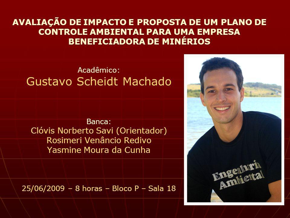 AVALIAÇÃO DE IMPACTO E PROPOSTA DE UM PLANO DE CONTROLE AMBIENTAL PARA UMA EMPRESA BENEFICIADORA DE MINÉRIOS Acadêmico: Gustavo Scheidt Machado Banca: