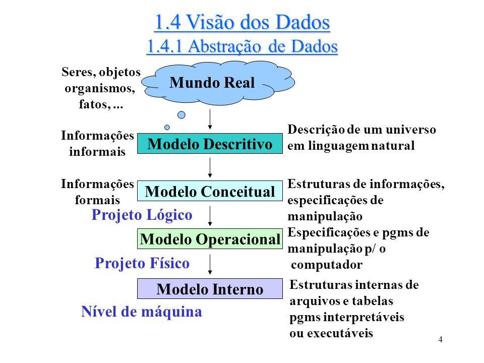 4 1.4 Visão dos Dados 1.4.1 Abstração de Dados Mundo Real Seres, objetos organismos, fatos,...