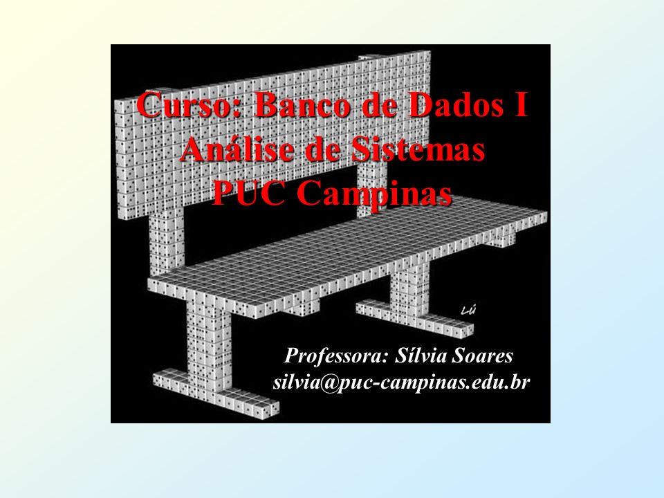 Curso: Banco de Dados I Análise de Sistemas PUC Campinas Professora: Sílvia Soares silvia@puc-campinas.edu.br