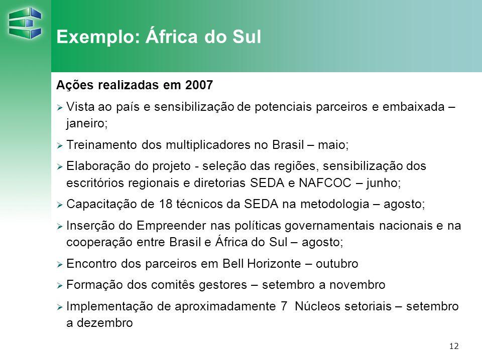 12 Exemplo: África do Sul Ações realizadas em 2007 Vista ao país e sensibilização de potenciais parceiros e embaixada – janeiro; Treinamento dos multi