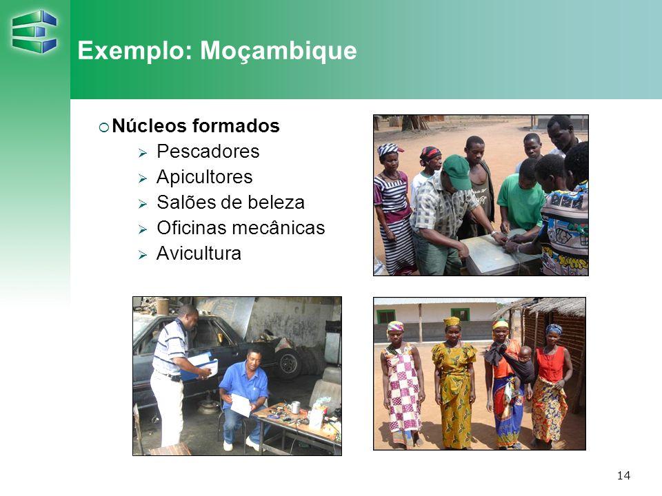 14 Exemplo: Moçambique Núcleos formados Pescadores Apicultores Salões de beleza Oficinas mecânicas Avicultura