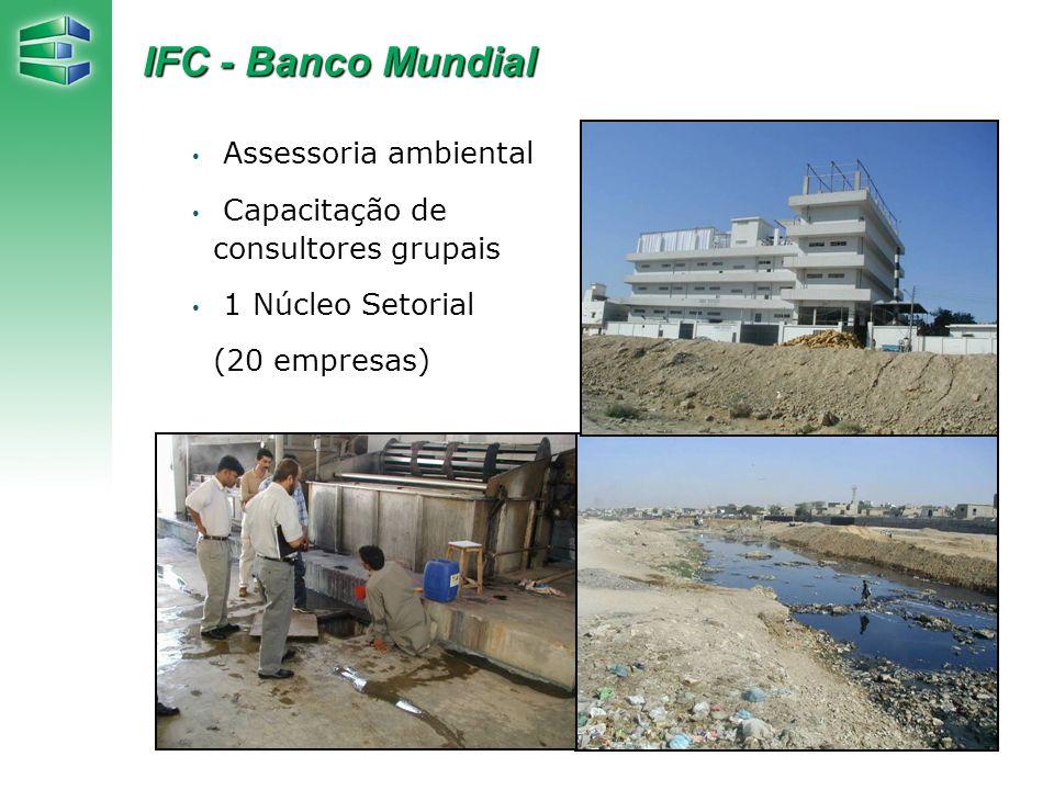 Assessoria ambiental Capacitação de consultores grupais 1 Núcleo Setorial (20 empresas) IFC - Banco Mundial