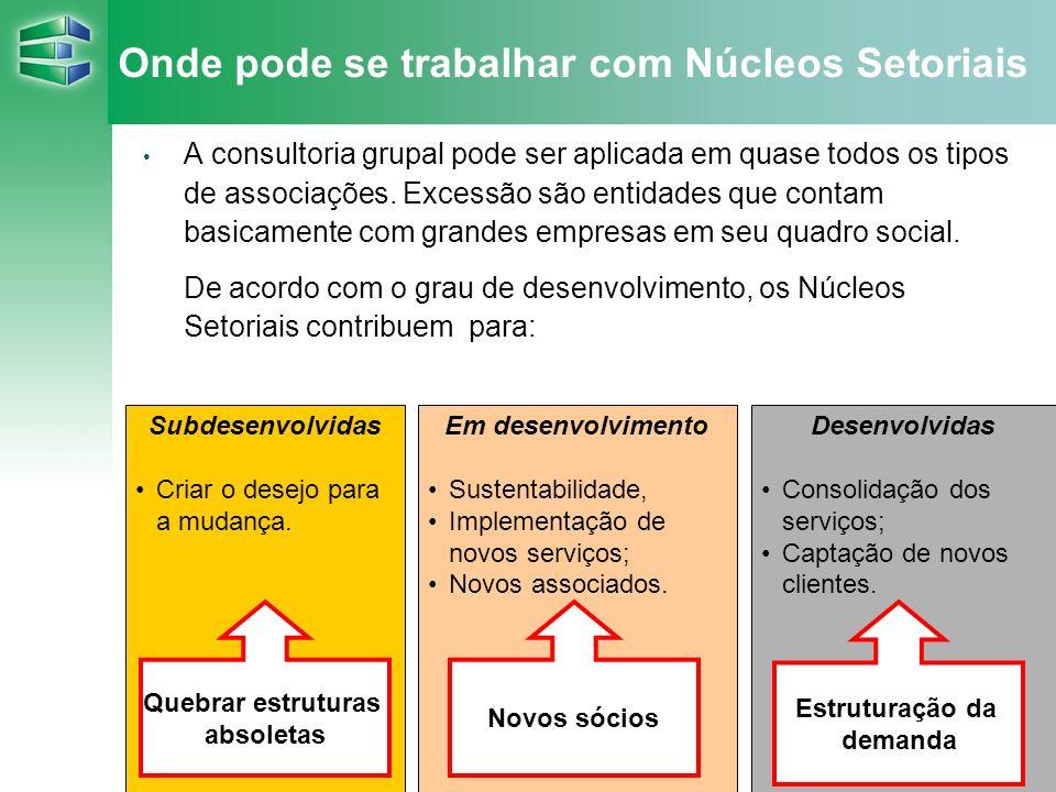 19 Onde pode se trabalhar com Núcleos Setoriais A consultoria grupal pode ser aplicada em quase todos os tipos de associações. Excessão são entidades