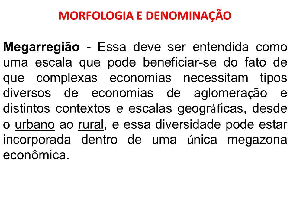 MORFOLOGIA E DENOMINAÇÃO Megarregião - Essa deve ser entendida como uma escala que pode beneficiar-se do fato de que complexas economias necessitam ti
