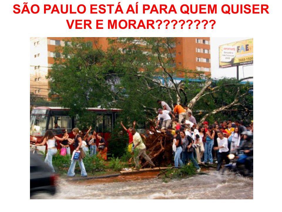 SÃO PAULO ESTÁ AÍ PARA QUEM QUISER VER E MORAR????????