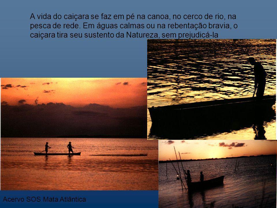 A vida do caiçara se faz em pé na canoa, no cerco de rio, na pesca de rede. Em águas calmas ou na rebentação bravia, o caiçara tira seu sustento da Na